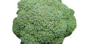 Broccoli - CAPELLA (WINTER)