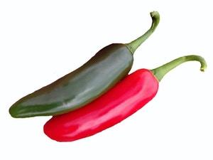 Hot Pepper - Caritas