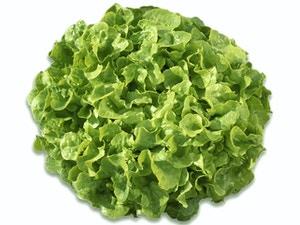 Lettuce - SMILE
