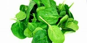 Spinach - DASH