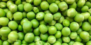 Peas- Green Feast