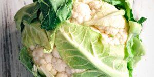 Cauliflower - WALLABY HYBRID